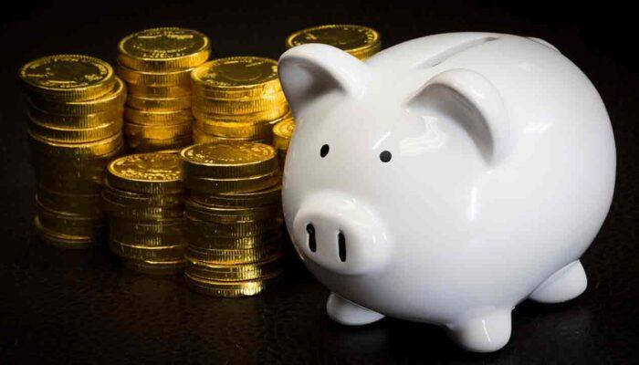 Pildil on hoiupõrsas koos müntidega, mis illustreerib teemat Kui suur on Satoshi salapärane varandus?