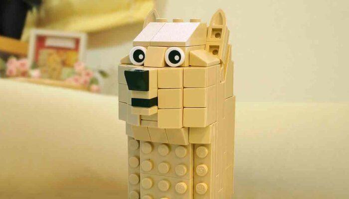 Pildil on Doge meem, mis illustreerib teemat: Dogecoin on nädala popim krüptoraha